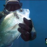 Italy-nadir-spearfishing