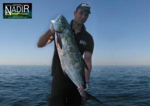 nadir-spearfishing